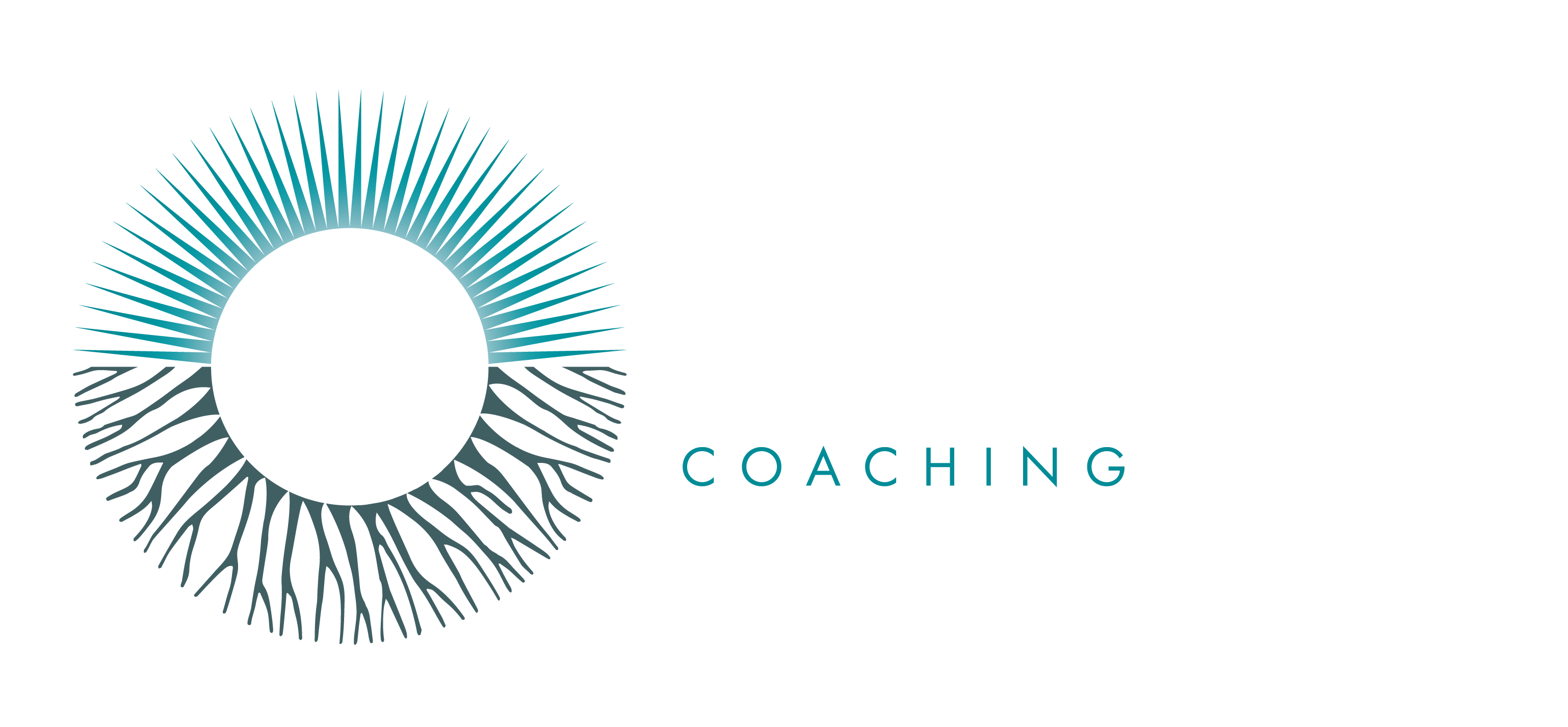 Sustainable Transformation Coaching